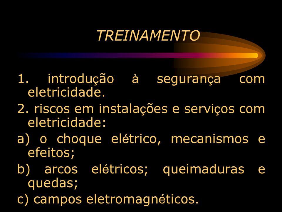 TREINAMENTO 1. introdução à segurança com eletricidade.