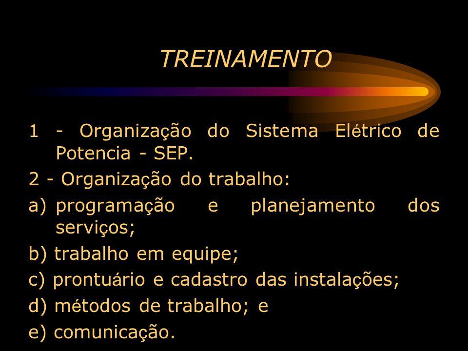 TREINAMENTO 1 - Organização do Sistema Elétrico de Potencia - SEP.