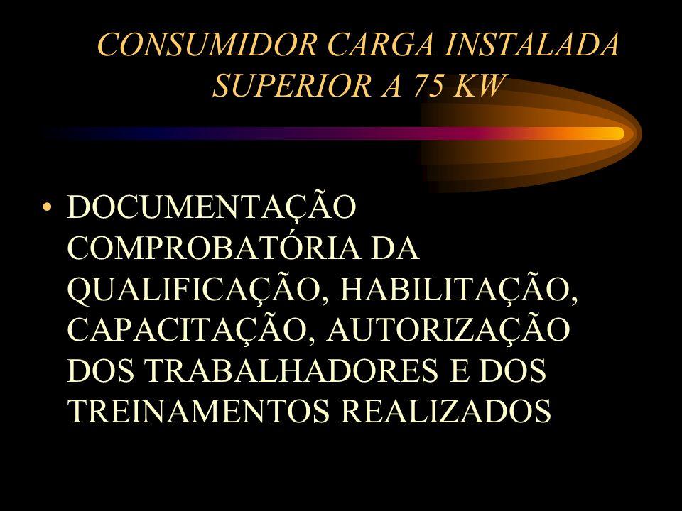 CONSUMIDOR CARGA INSTALADA SUPERIOR A 75 KW