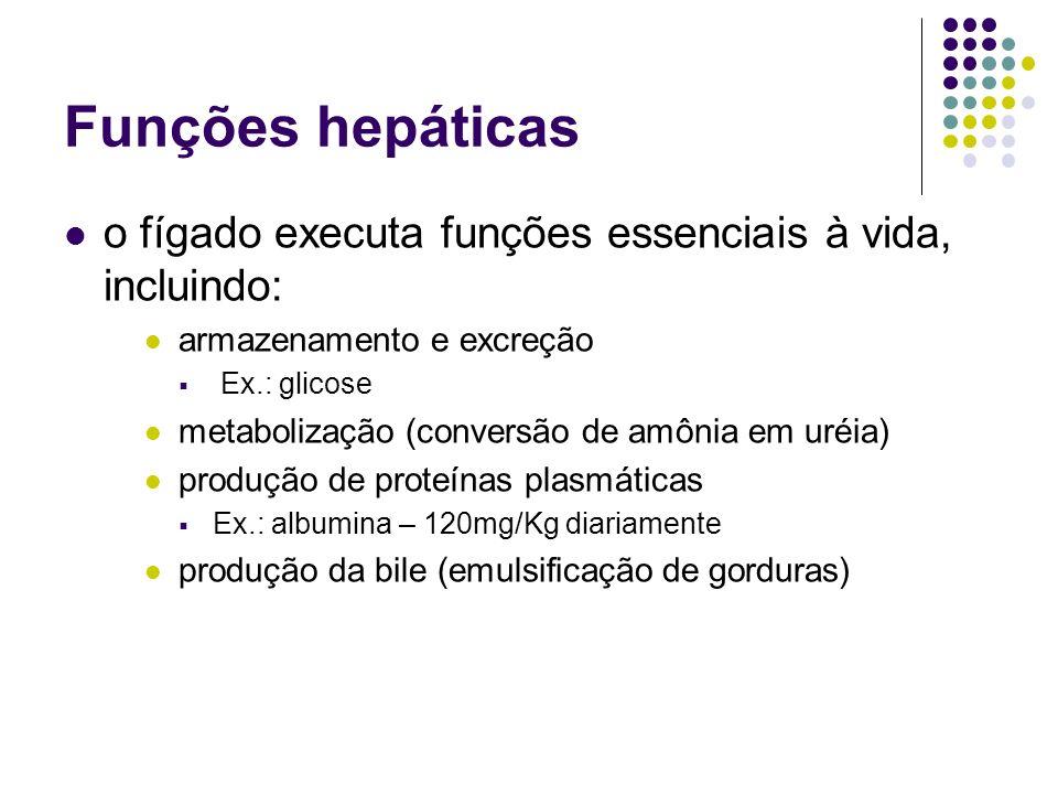 Funções hepáticas o fígado executa funções essenciais à vida, incluindo: armazenamento e excreção.