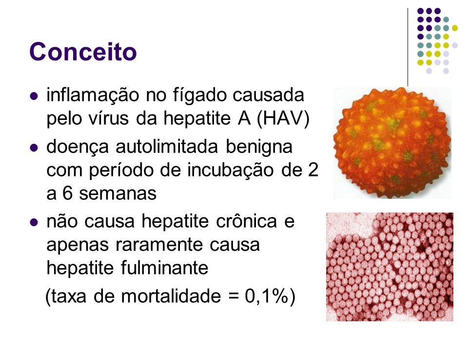 Conceito inflamação no fígado causada pelo vírus da hepatite A (HAV)