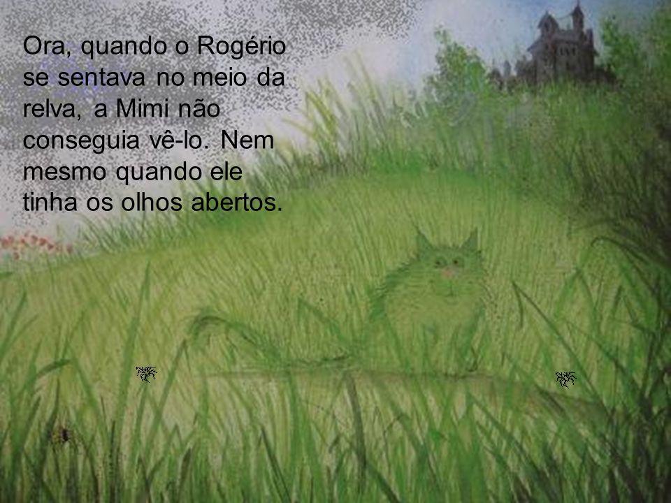 Ora, quando o Rogério se sentava no meio da relva, a Mimi não conseguia vê-lo.