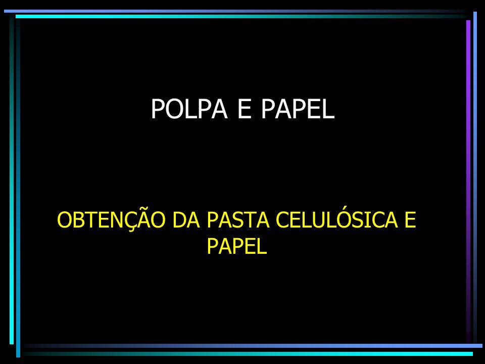 OBTENÇÃO DA PASTA CELULÓSICA E PAPEL