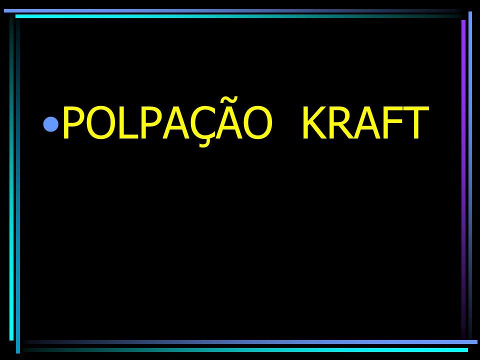 POLPAÇÃO KRAFT