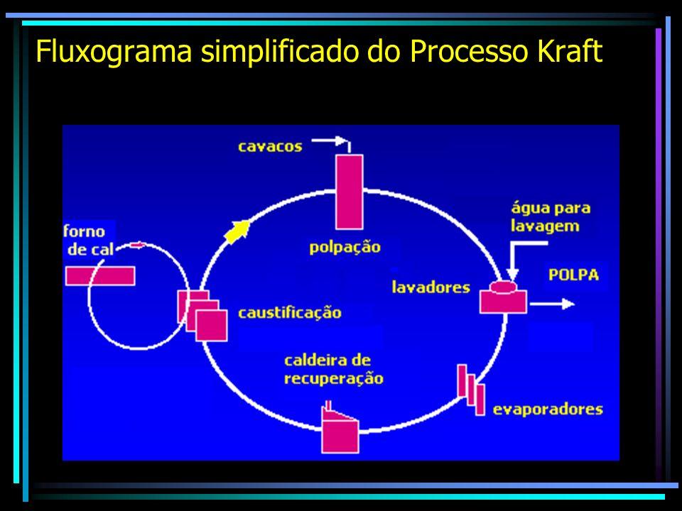Fluxograma simplificado do Processo Kraft