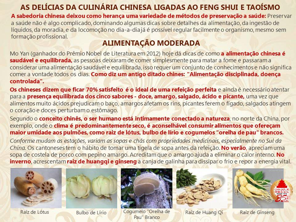 Cogumelo Orelha de Pau Branco