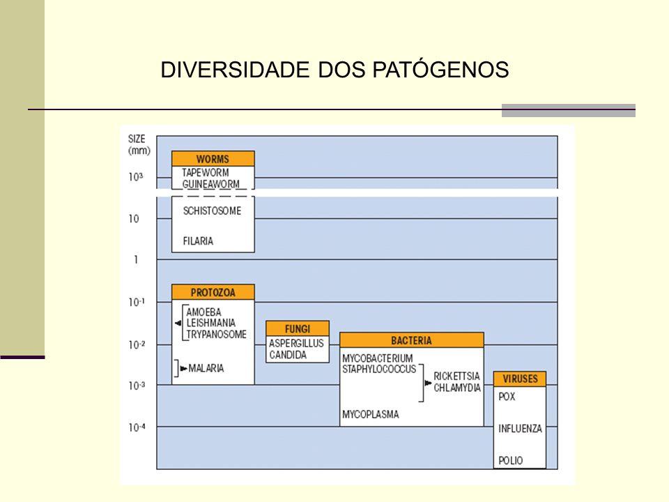 DIVERSIDADE DOS PATÓGENOS