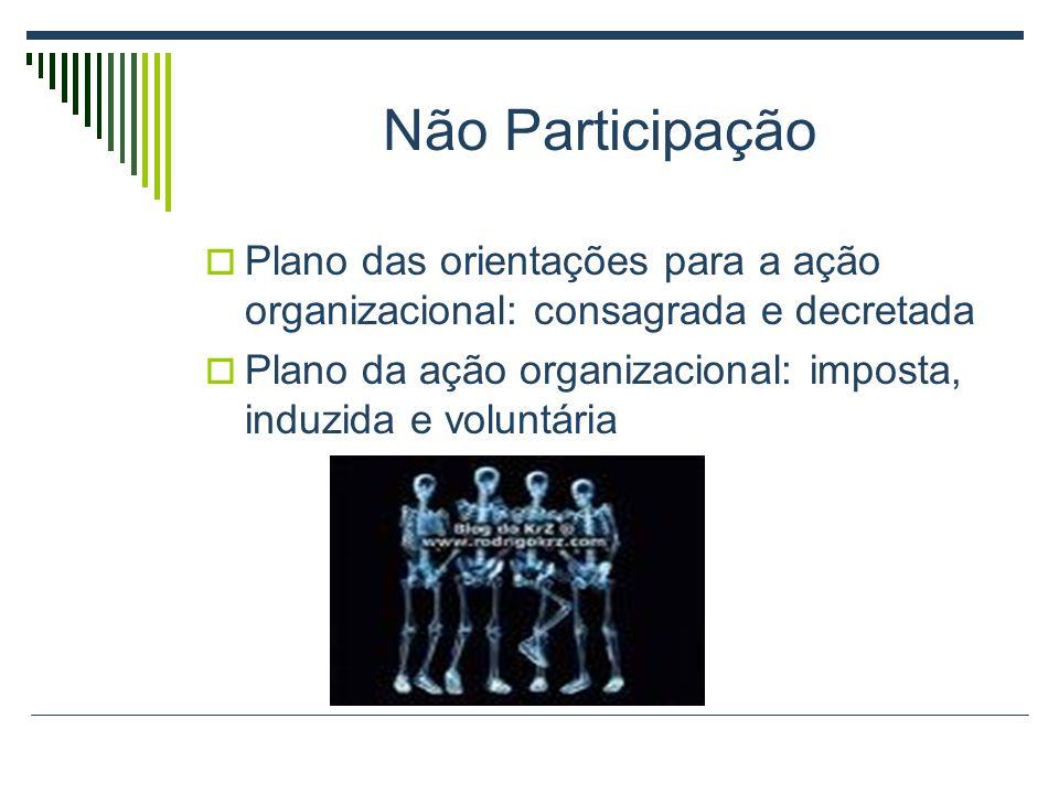 Não Participação Plano das orientações para a ação organizacional: consagrada e decretada.