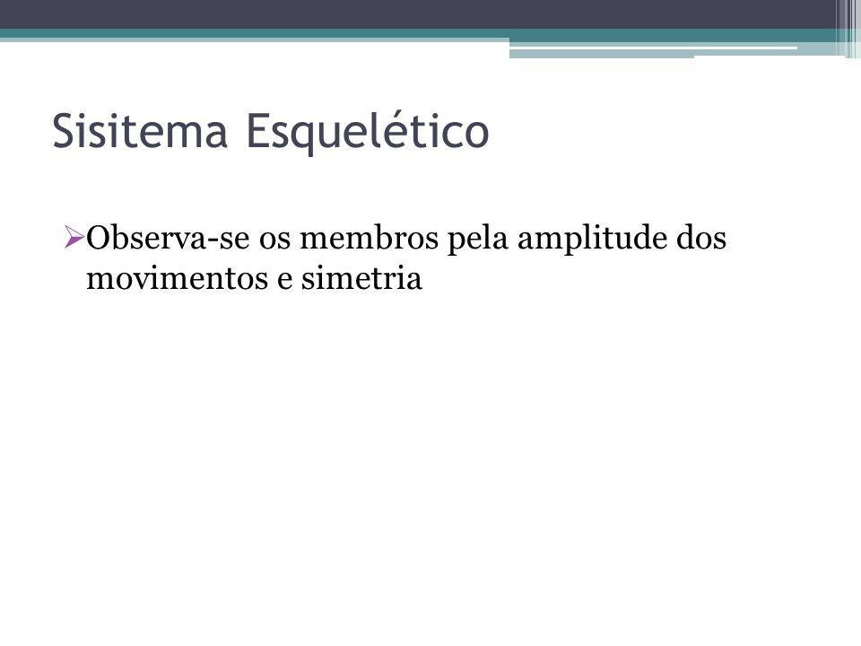 Sisitema Esquelético Observa-se os membros pela amplitude dos movimentos e simetria