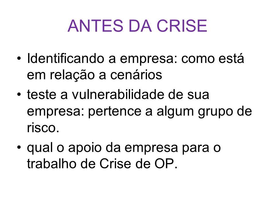 ANTES DA CRISE Identificando a empresa: como está em relação a cenários. teste a vulnerabilidade de sua empresa: pertence a algum grupo de risco.