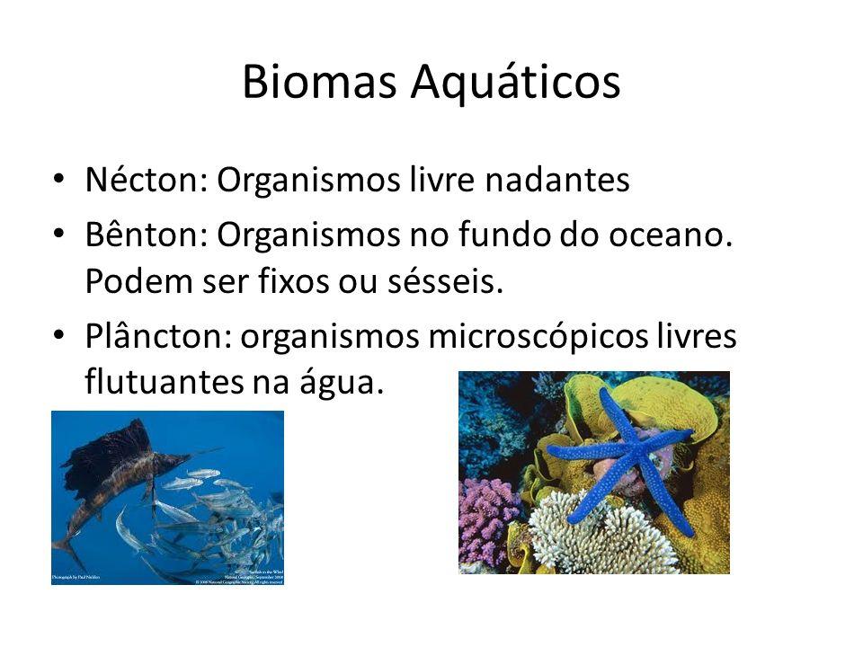 Biomas Aquáticos Nécton: Organismos livre nadantes