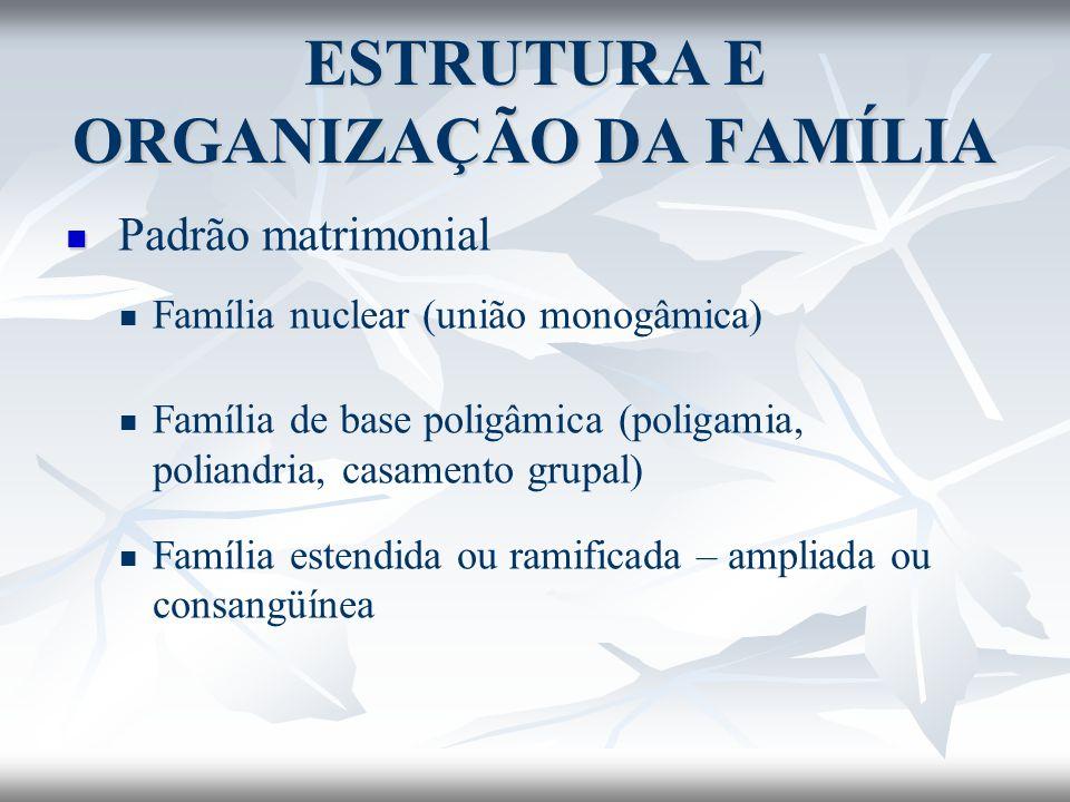 ESTRUTURA E ORGANIZAÇÃO DA FAMÍLIA