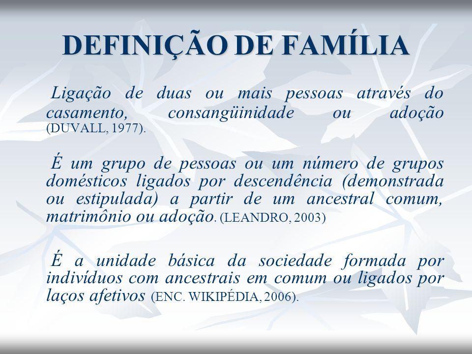 DEFINIÇÃO DE FAMÍLIA