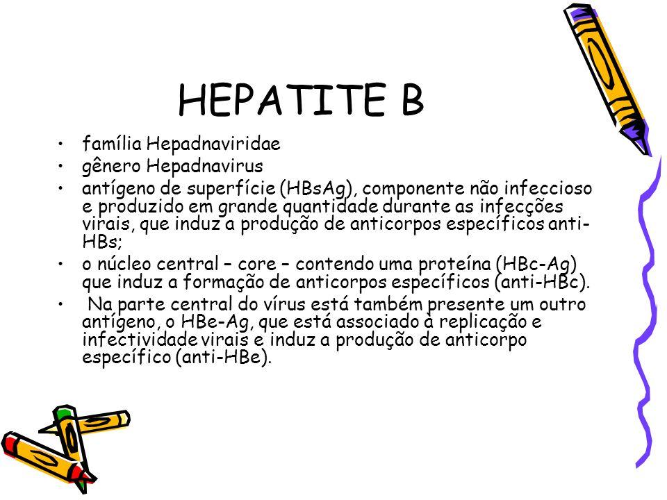 HEPATITE B família Hepadnaviridae gênero Hepadnavirus