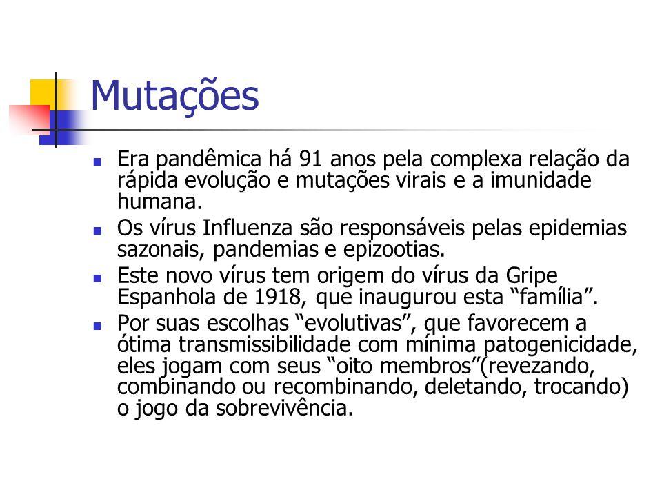 Mutações Era pandêmica há 91 anos pela complexa relação da rápida evolução e mutações virais e a imunidade humana.