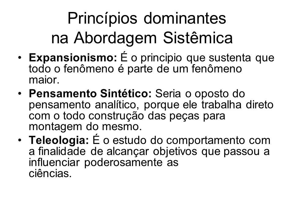 Princípios dominantes na Abordagem Sistêmica