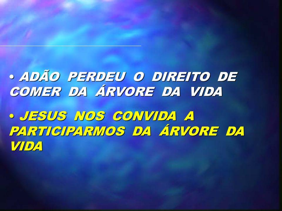 ADÃO PERDEU O DIREITO DE COMER DA ÁRVORE DA VIDA