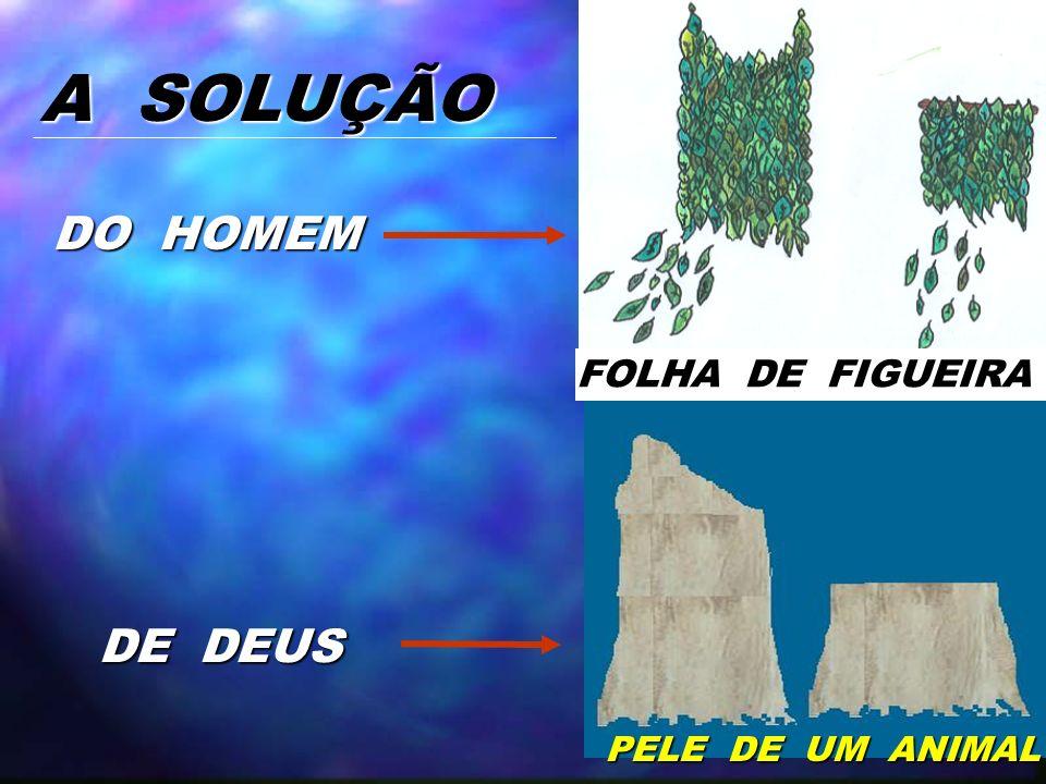 A SOLUÇÃO DO HOMEM FOLHA DE FIGUEIRA DE DEUS PELE DE UM ANIMAL