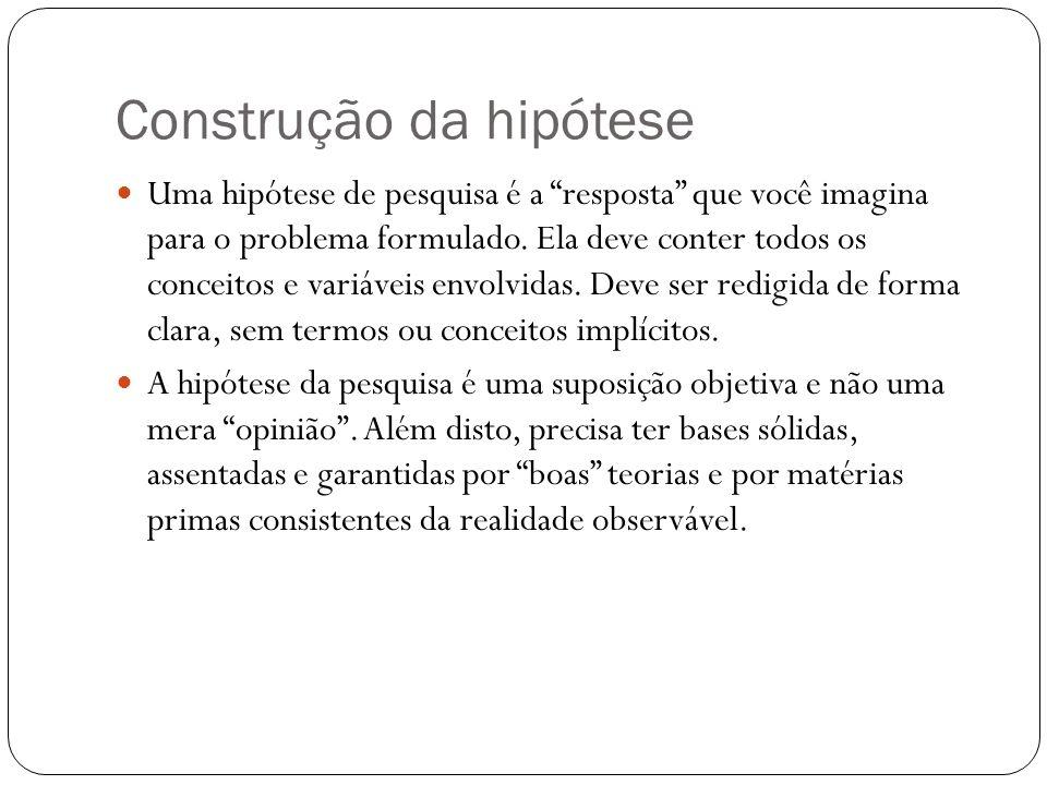 Construção da hipótese