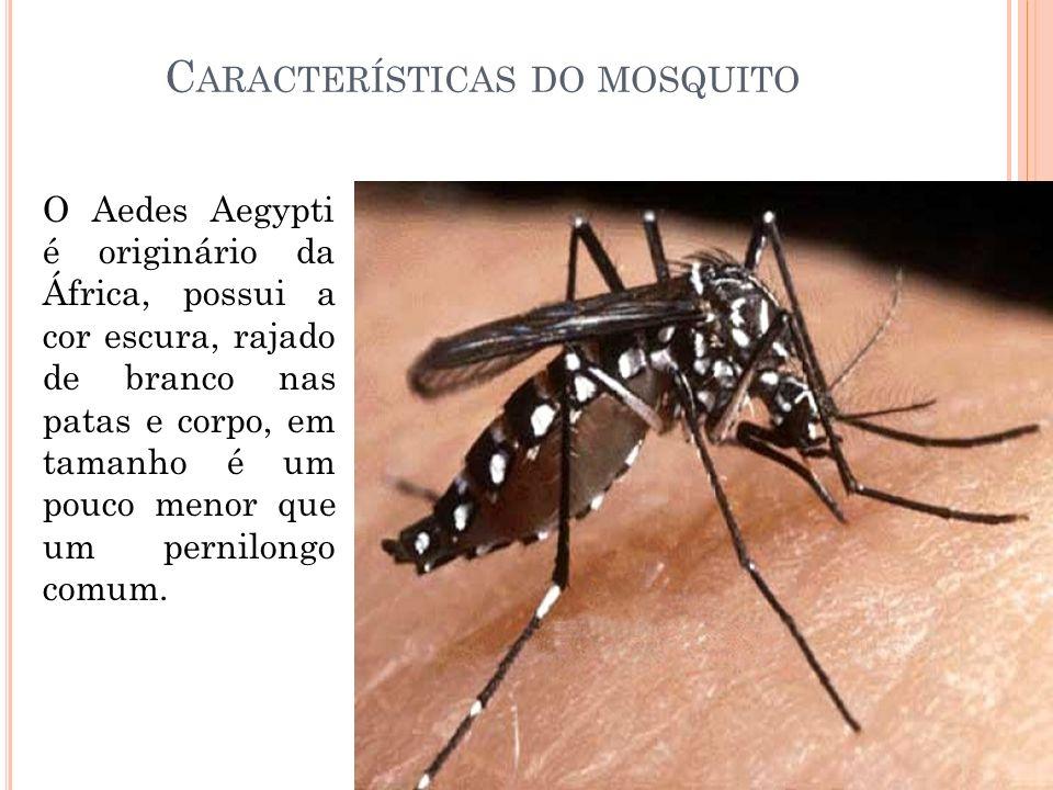 Características do mosquito