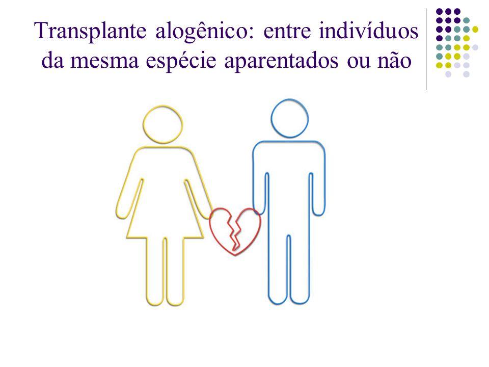 Transplante alogênico: entre indivíduos da mesma espécie aparentados ou não
