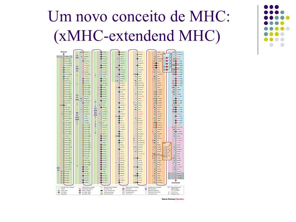 Um novo conceito de MHC: (xMHC-extendend MHC)