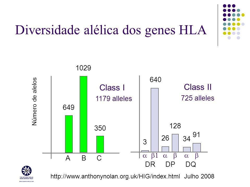 Diversidade alélica dos genes HLA