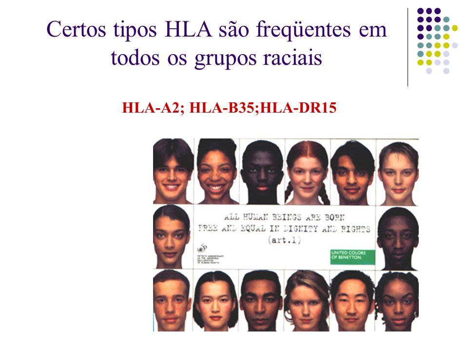 Certos tipos HLA são freqüentes em todos os grupos raciais