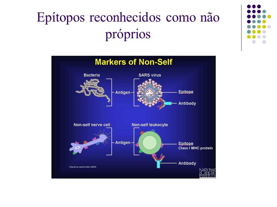 Epítopos reconhecidos como não próprios