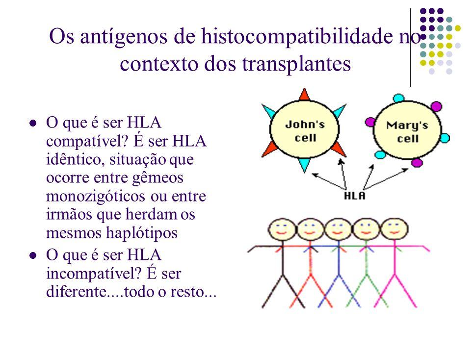 Os antígenos de histocompatibilidade no contexto dos transplantes