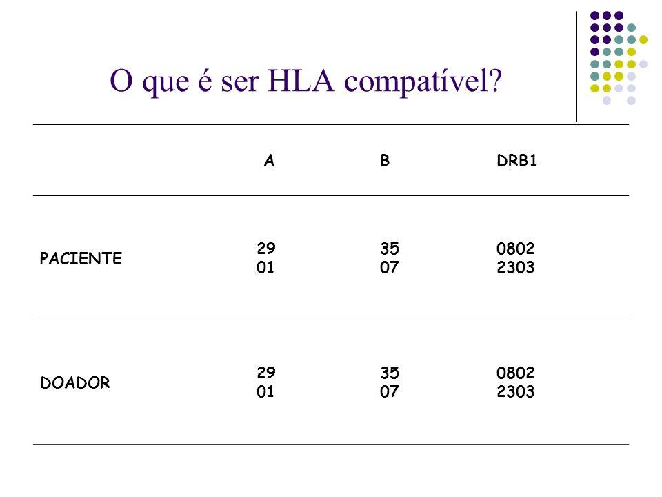 O que é ser HLA compatível