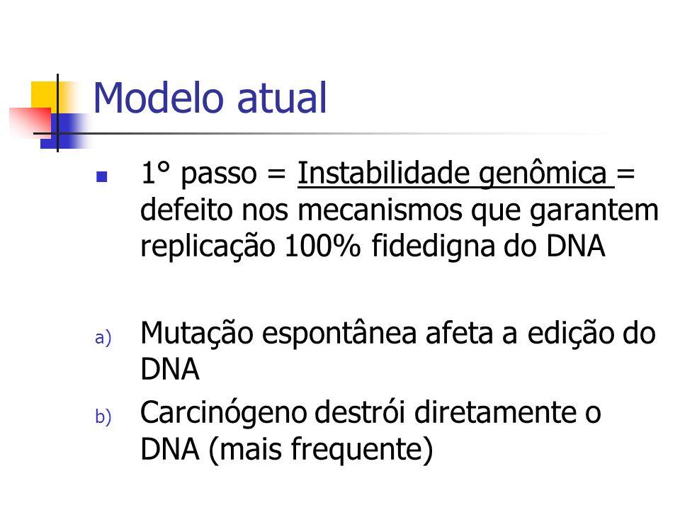 Modelo atual 1° passo = Instabilidade genômica = defeito nos mecanismos que garantem replicação 100% fidedigna do DNA.