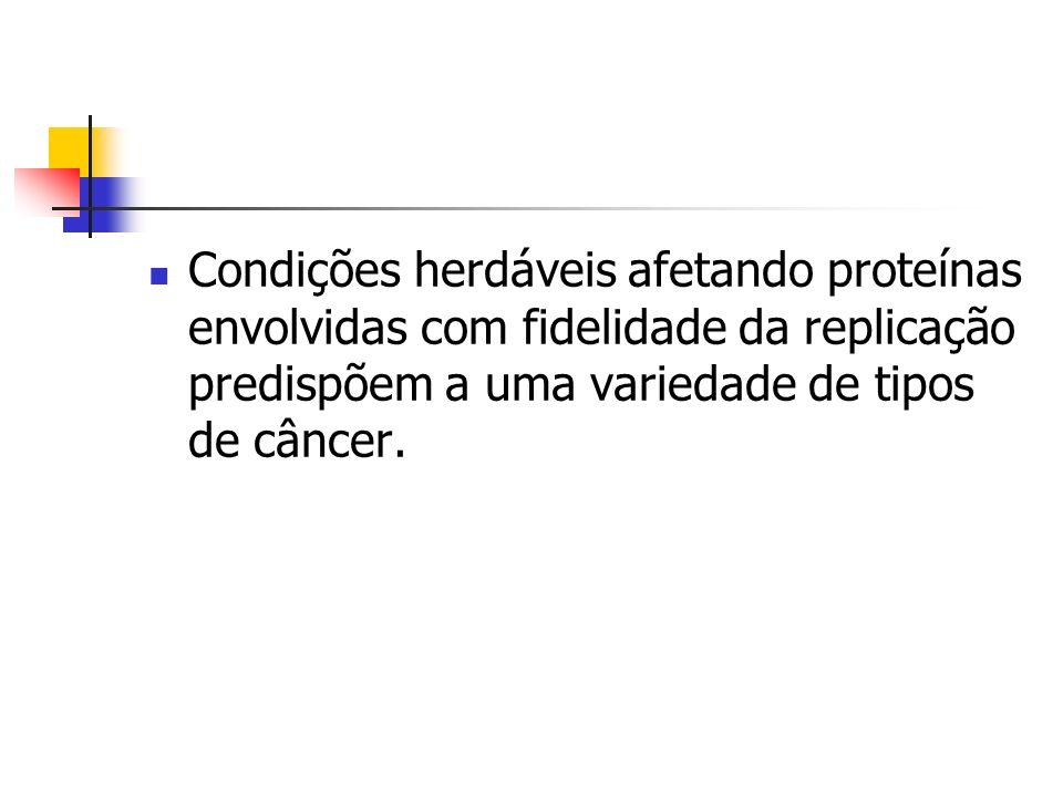 Condições herdáveis afetando proteínas envolvidas com fidelidade da replicação predispõem a uma variedade de tipos de câncer.