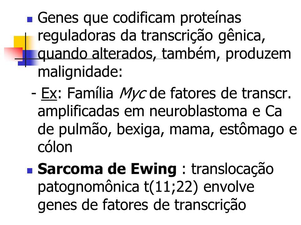 Genes que codificam proteínas reguladoras da transcrição gênica, quando alterados, também, produzem malignidade: