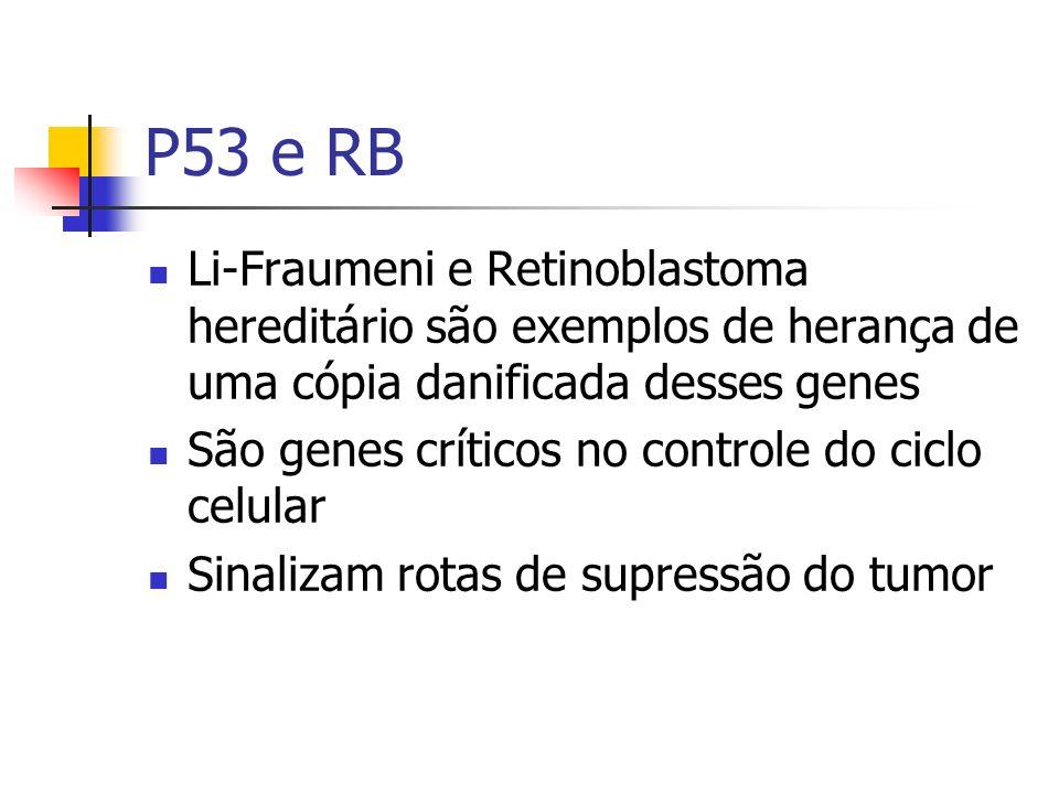 P53 e RB Li-Fraumeni e Retinoblastoma hereditário são exemplos de herança de uma cópia danificada desses genes.