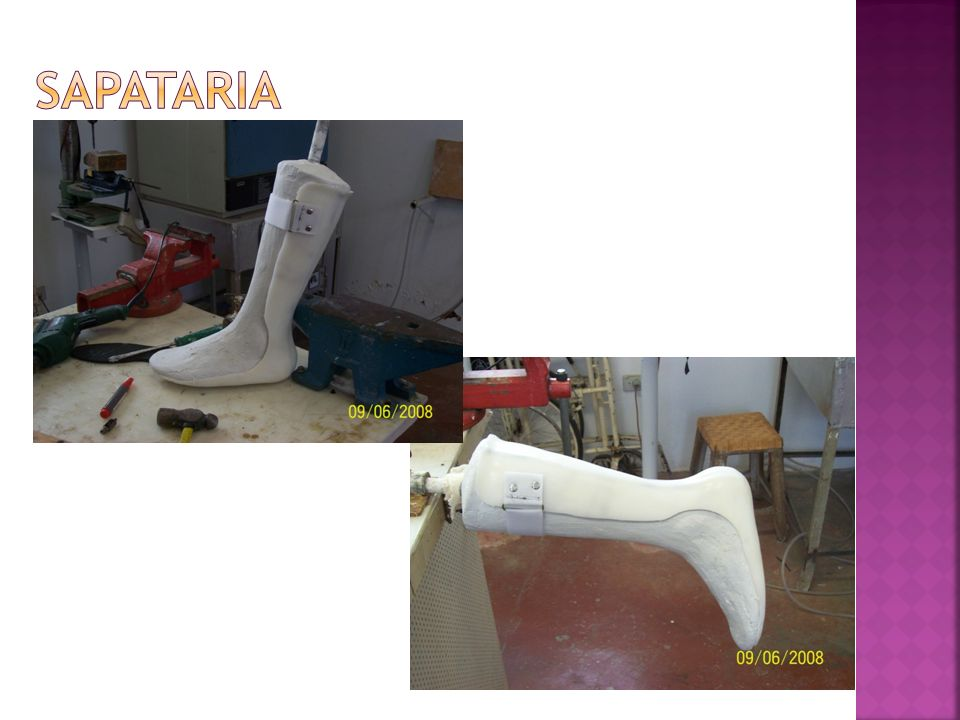 sapataria