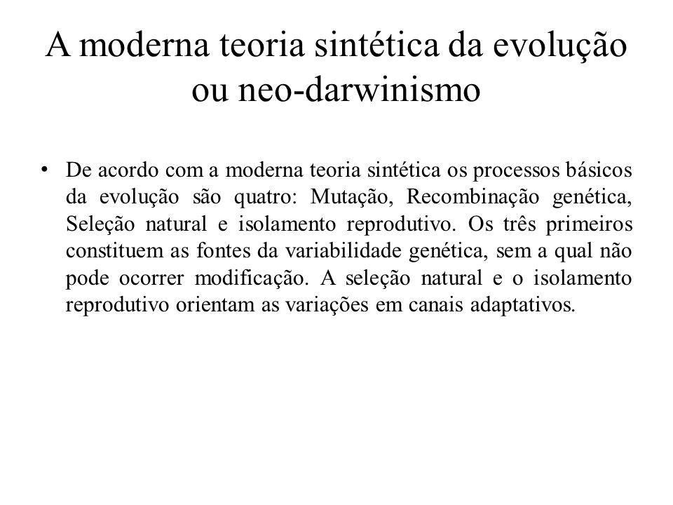 A moderna teoria sintética da evolução ou neo-darwinismo