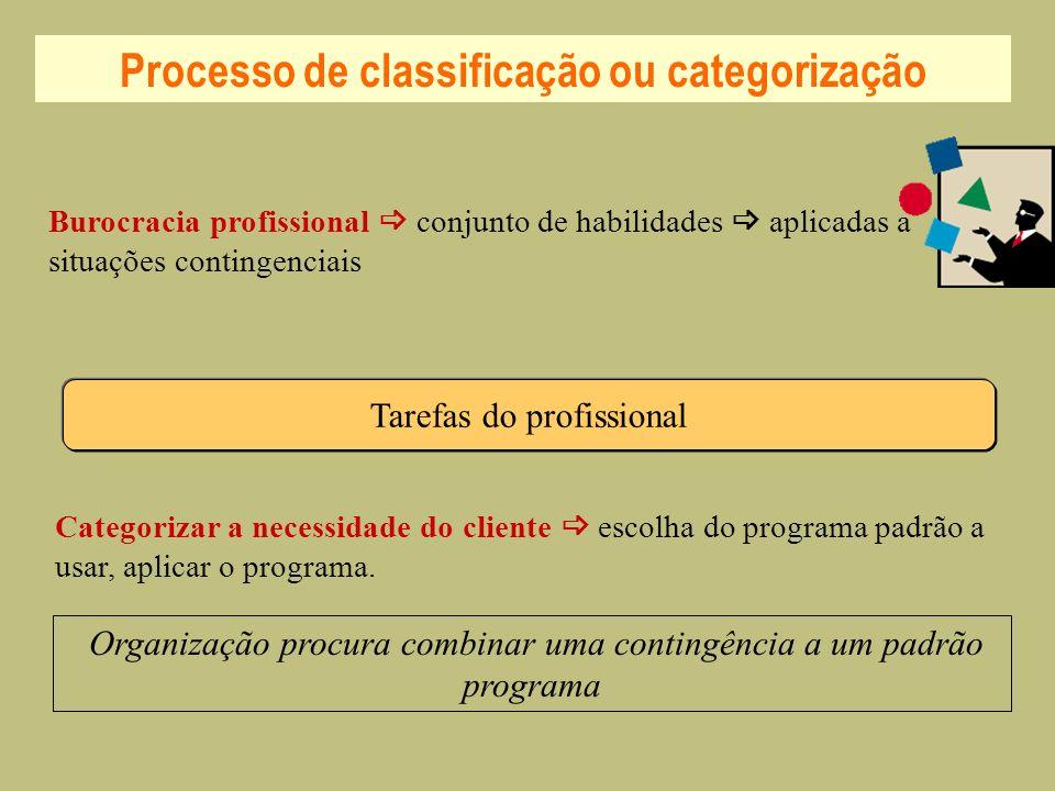 Processo de classificação ou categorização