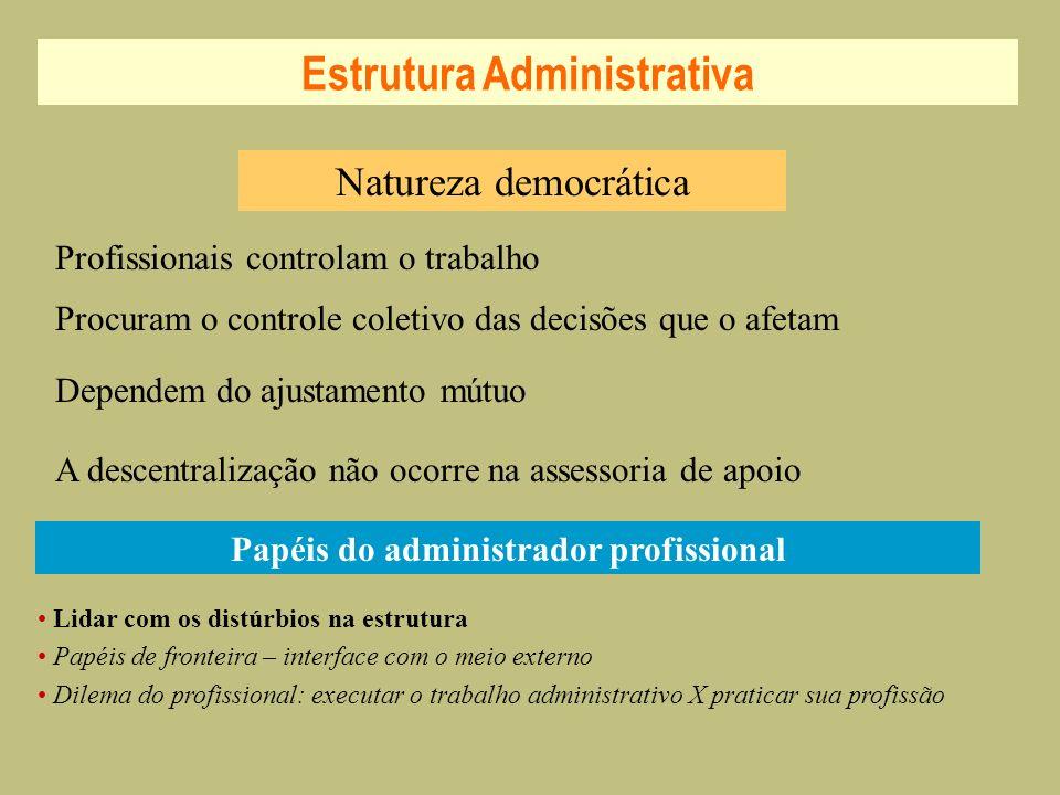 Estrutura Administrativa Papéis do administrador profissional