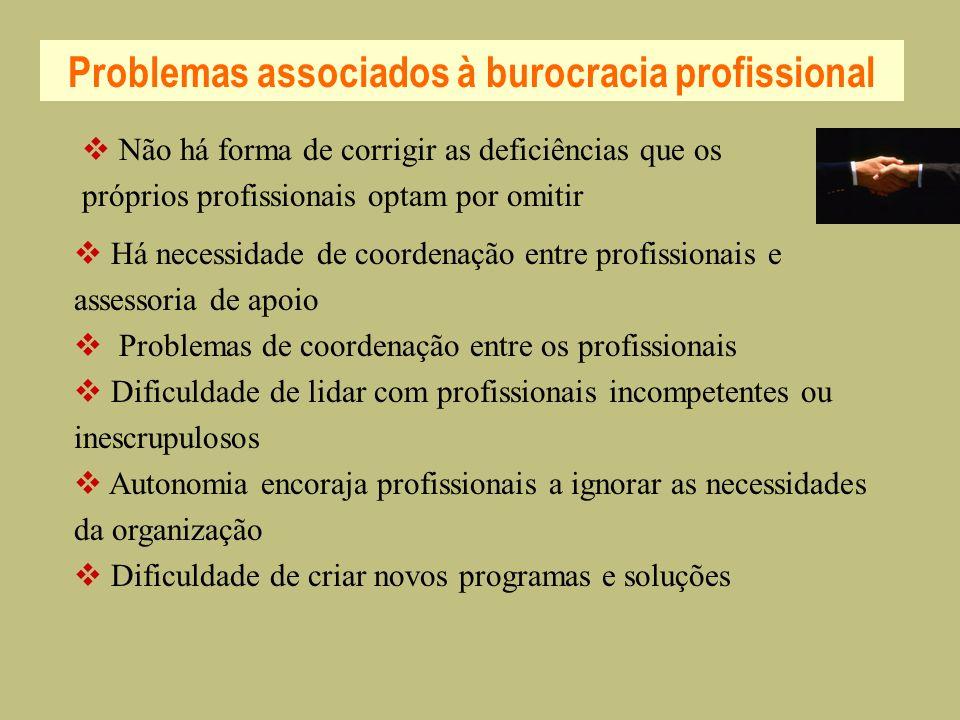 Problemas associados à burocracia profissional