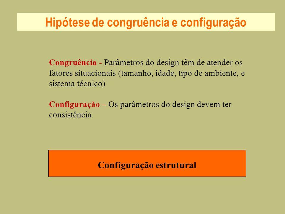 Hipótese de congruência e configuração Configuração estrutural