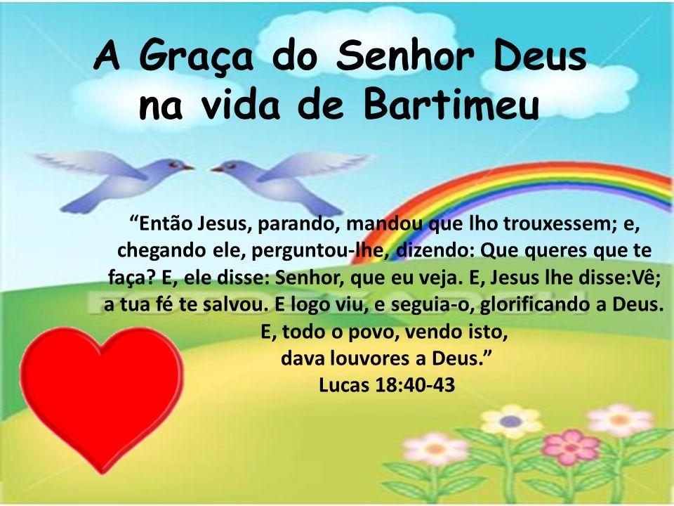 A Graça do Senhor Deus na vida de Bartimeu