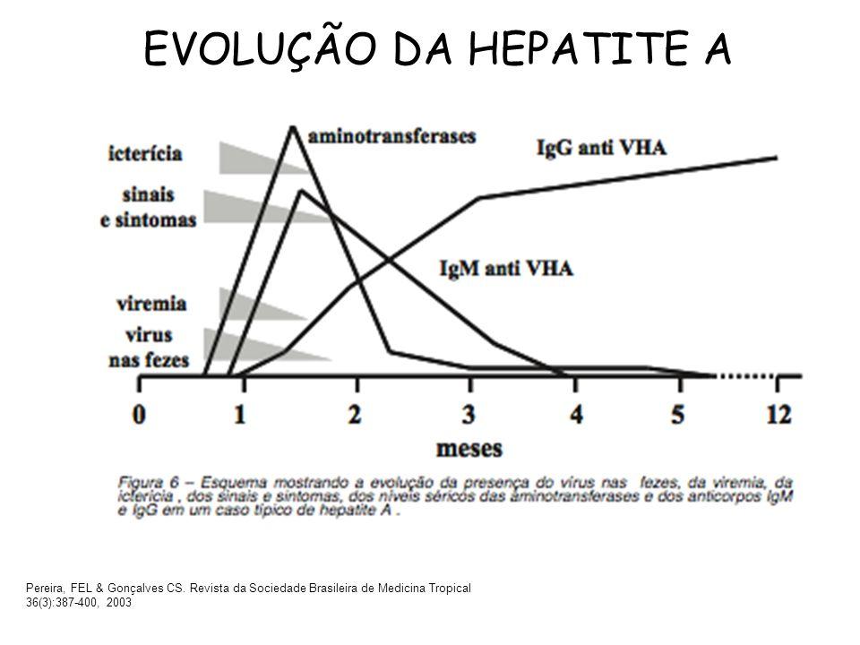 EVOLUÇÃO DA HEPATITE A Pereira, FEL & Gonçalves CS.
