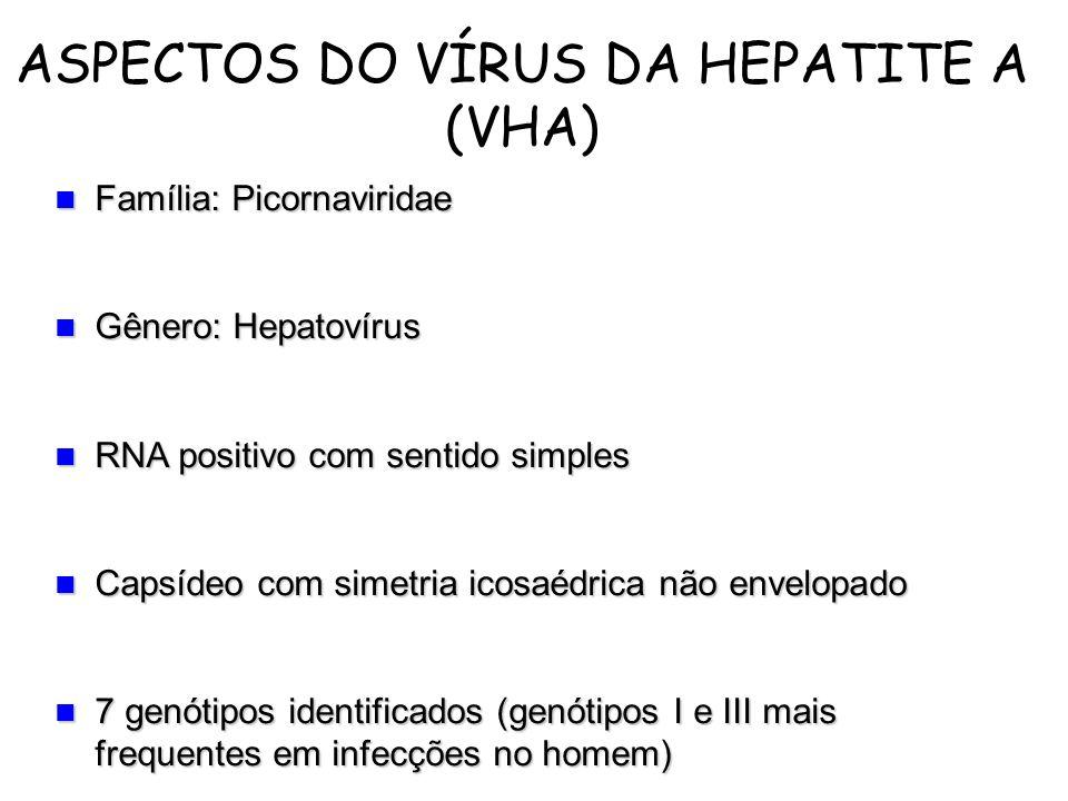 ASPECTOS DO VÍRUS DA HEPATITE A (VHA)