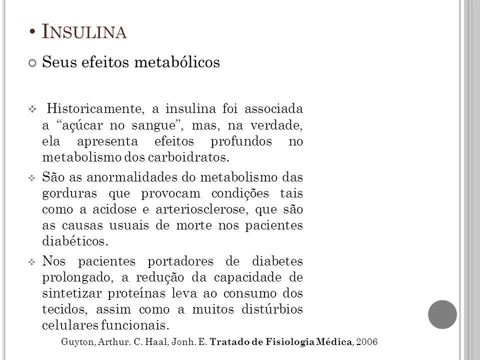Insulina Seus efeitos metabólicos