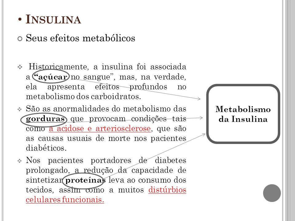 Metabolismo da Insulina