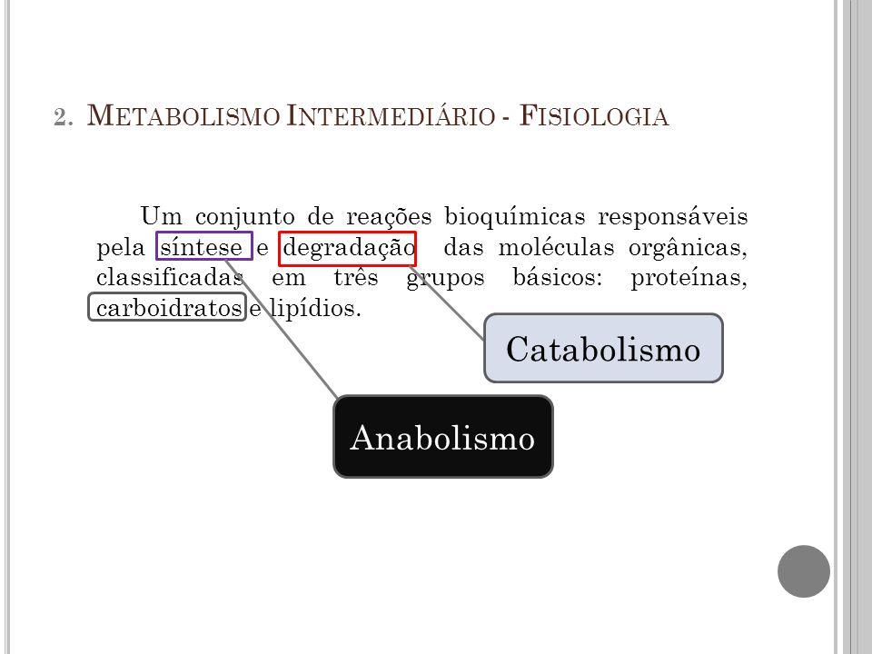 2. Metabolismo Intermediário - Fisiologia