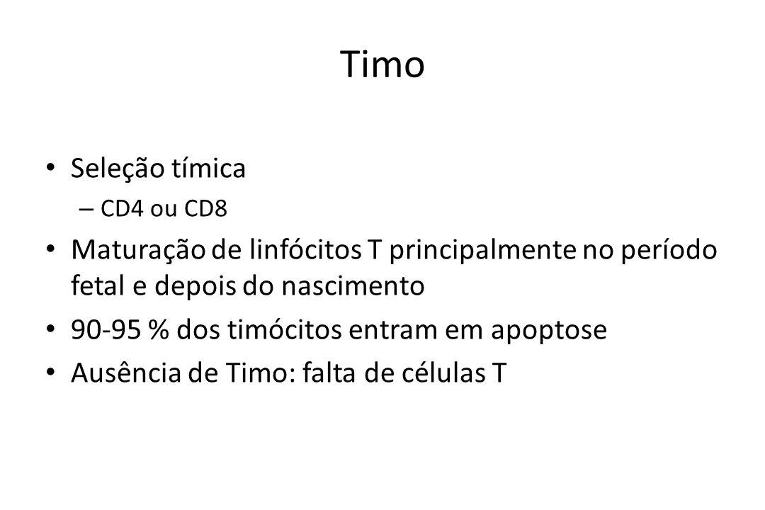 Timo Seleção tímica. CD4 ou CD8. Maturação de linfócitos T principalmente no período fetal e depois do nascimento.