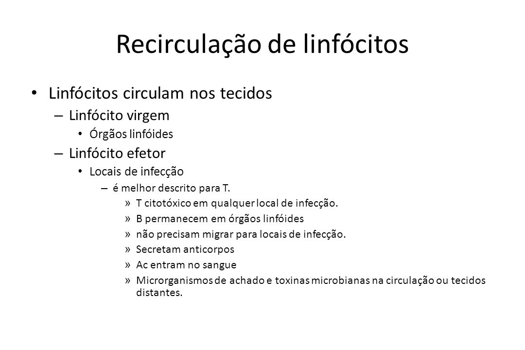 Recirculação de linfócitos