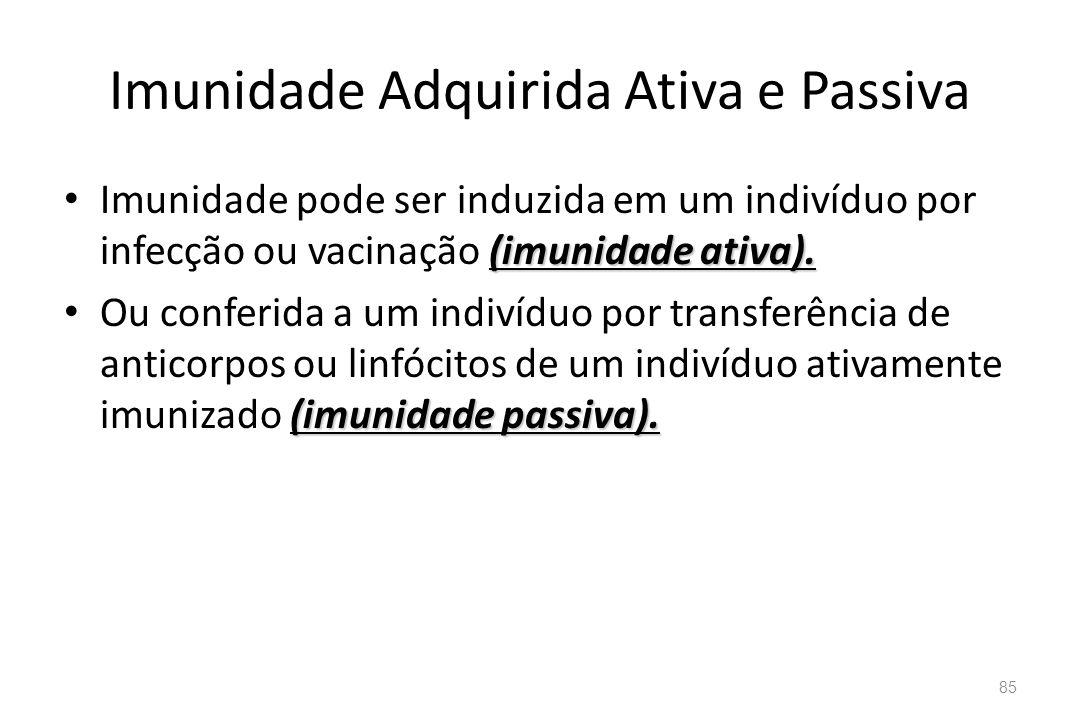 Imunidade Adquirida Ativa e Passiva
